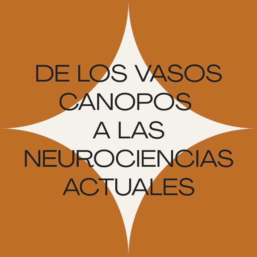 De los vasos canopos a las neurociencias actuales